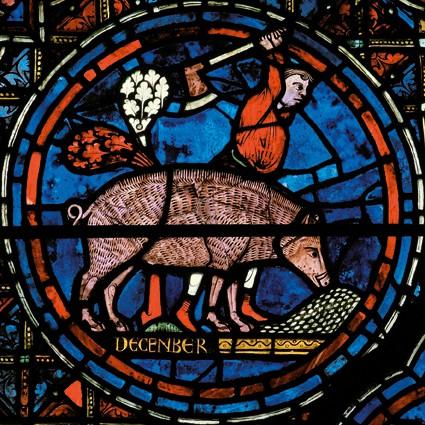 Vitraux de Chartres Chartres_vitrail_decembre