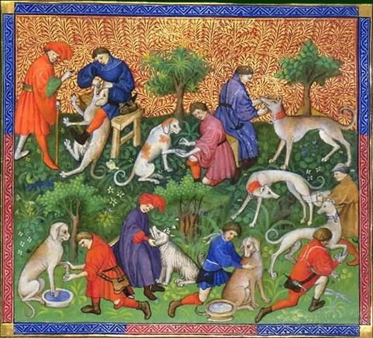 Gaston Phébus, Le Livre de la chasse : Des maladies des chiens et de leurs conditions, XVe s., Chantilly, musée Condé