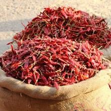 épices sur un marché indien (photo :Gérard Grégor)