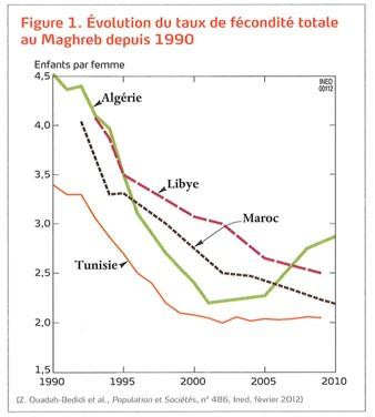 Évolution du taux de fécondité totale au Maghreb depuis 1990 (DR)