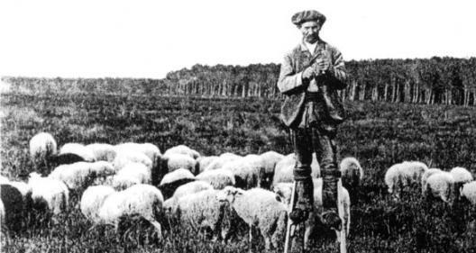 Berger landais sur ses échasses (XIXe siècle)