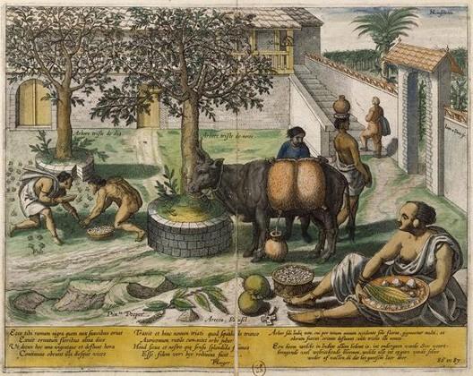 Joannes van Linschoten Doetechum, Voyage de Linschoot dans l'Inde en 1595, Paris, BnF