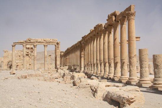 Colonnade (IIe siècle, Palmyre, Syrie), photo : Gérard Grégor, 2009