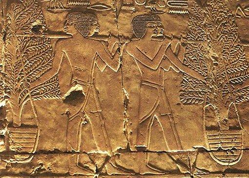 Expédition au pays de Pount, bas-relief du temple de Deir el-Bahari, XVe s. av. J.-C., Égypte