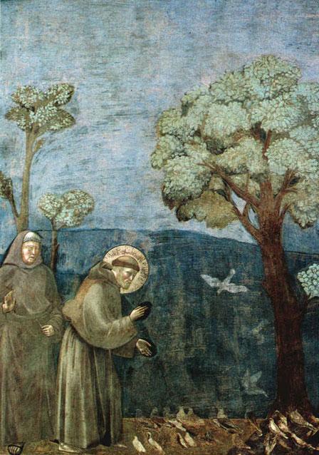 Saint Francois prêchant aux oiseaux (Giotto, basilique d'Assise)