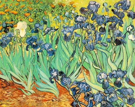 Van Gogh, les Iris (1889, 93cmx72cm, Paul Getty Museum, Californie)