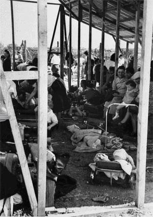 14 mai 1941 La «rafle du billet vert»  Campsfamilles