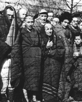 Libération du camp d'Auschwitz-Birkenau, le 27 janvier 1945