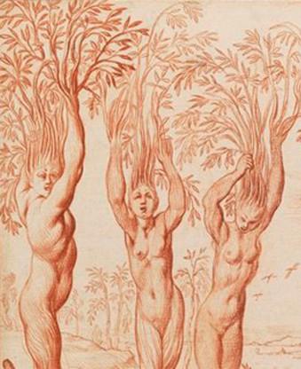 Les Héliades changées en peupliers à la mort de leur frère Phaéton, Pierre Brebiette, 1630.