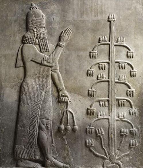 Bas-relief du palais de Khorsabad (Irak), VIIIe s. av. J.-C., Paris, musée du Louvre. L'agrandissement montre Assurnasirpal II devant un arbre sacré, bas-relief du palais de Nimrud (Irak), VIIIe siècle av. J.-C., Londres, British Museum.