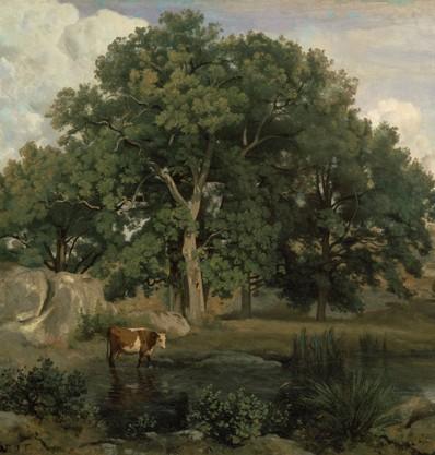 Forêt de Fontainebleau, 1846, Jean-Baptiste Corot, Boston, musée des Beaux-Arts.