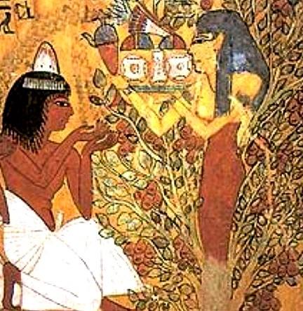 Représentation de la déesse-arbre, « La grande Nout », Tombe de Sennedjem, XVIIIe dynastie, Louxor, Égypte.