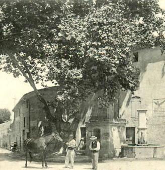 L'arbre du Roi de Rome à Mirabel-aux-Baronnies dans la Drôme. La Drôme illustrée - Mirabel-aux-Baronnies- Rue principale, Audran édit., XIXe siècle. L'agrandissement montre le même lieu de nos jours.