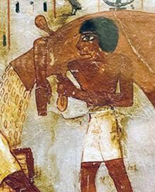 Récolte des épis par des moissonneurs, tombe d'Ounsou (XVIIIe dynastie).