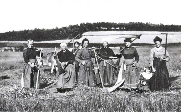 Femmes aux champs en Auvergne pendant la Grande Guerre, carte postale. En agrandissement, femmes s'occupant des labours, Paris, BnF, Gallica.