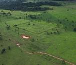 Géoglyphes, motifs géométriques gravés dans la terre, de plus en plus visibles avec la déforestation de l'Amazonie, New York Times, 2012, DR.