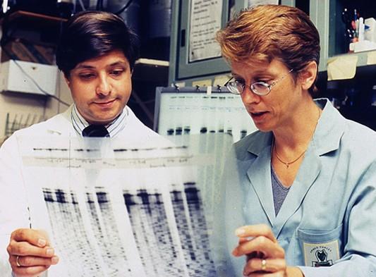Jeffrey Taubenberger et Ann Reid faisant des recherches sur la grippe espagnole de 1918, Silver Spring, Maryland, musée national de la Santé et de la Médecine. L'agrandissement montre Johan Hultin à 72 ans, lors de son deuxième voyage au cimetière de la mission Brevig en 1997, @Johan Hultin, DR.