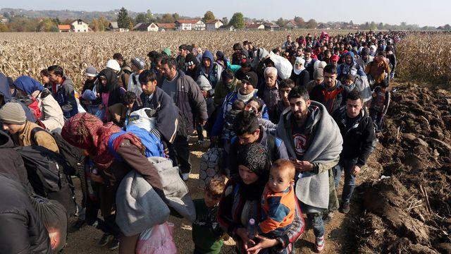 Colonnes de réfugiés dans les Balkans en 2015 (DR)