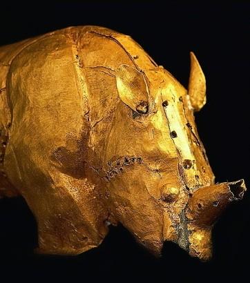 Le Rhinocéros d'or, Afrique australe