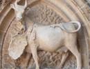 Patrimoine protégé, patrimoine condamné, Menace sur le patrimoine rural