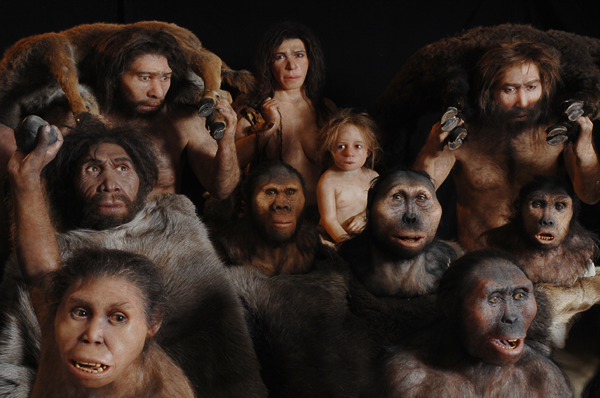 Australopitheques, Neanderthal et Homo-sapiens, ©2007-Photographe P.Plailly, Reconstruction E. Daynes