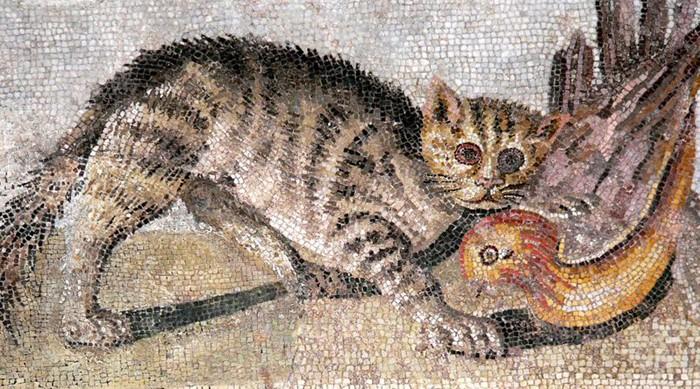 Chat tenant une perdrix dans la gueule, mosaïque romaine, musée national d'archéologie, Casa del Fauno, Pompéï, Naples.