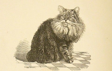 Chanoine, le chat de Victor Hugo, The Bristish Library, Londres.
