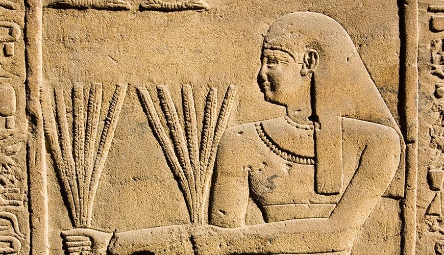Tombe d'Ounsou (comptable des grains du temple d'Amon, vers 1450 av. J.-C.