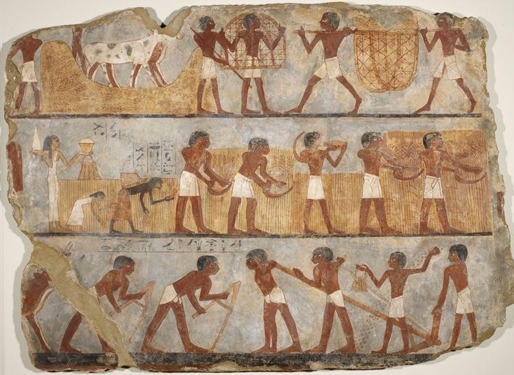 Tombe d'Ounsou, comptable des grains du temple d'Amon  (peinture sur limon, 18e dynastie, vers 1450 avant J.-C.,  Louxor)
