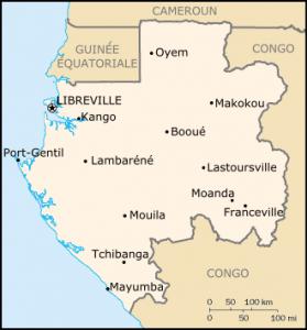 31 Août 2016 : Gabon : les deux crocodiles et le marigot