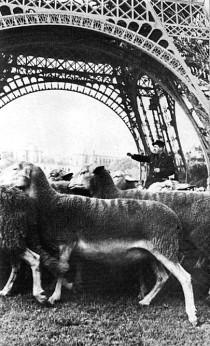 Le  Larzac à Paris