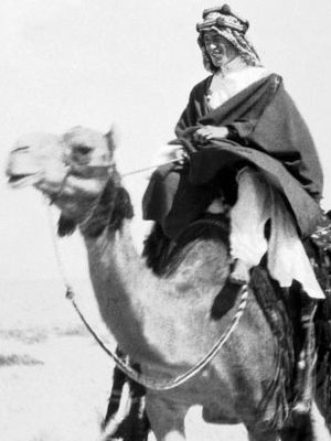 T.E. Lawrence (Lawrence d'Arabie) sur son dromadaire de combat à Akaba (1917)