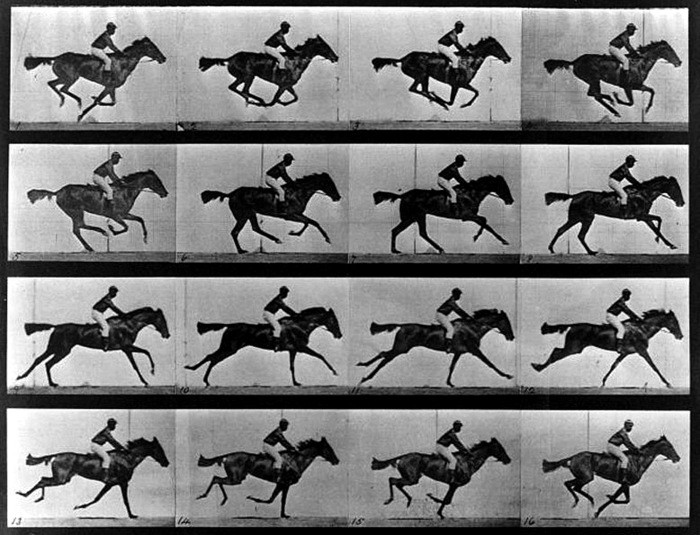 Eadweard Muybridge (1830-1904), Saut d'obstacle, cheval noir, 1876