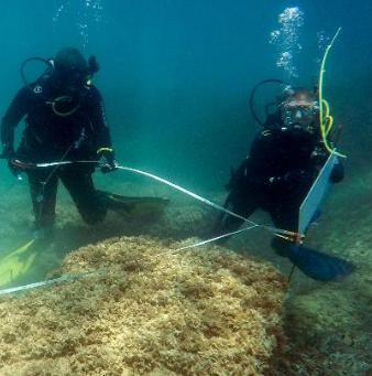 02 septembre 2017 : Tunisie: une cité romaine découverte sous la mer près de Nabeul