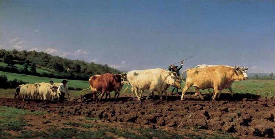 08 Août 2019 : Mille ans de savoir-faire paysan face au « progrès »