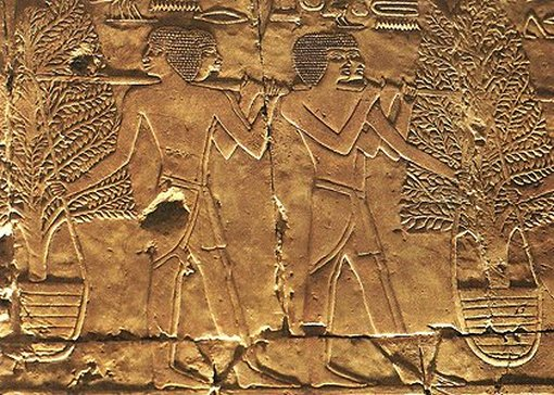 Expedition to the land of Punt, bas-relief from the temple of Deir el-Bahari, 15th century.  av.  AD, Egypt