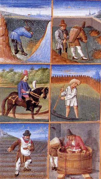 Calendrier des travaux agricoles (1306, extrait du Rustican, Pietro de' Crescenzi, Musée Condé, Chantilly)