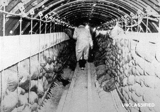 Un Tunnel Sous Le Mur De Berlin Doc Cia