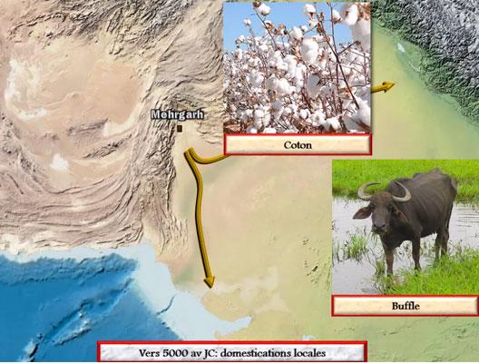 La civilisation de l'Indus, une carte animée de Vincent Boqueho pour Herodote.net, 2014