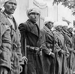 Une unité de harki prête au combat en Oranie en 1956